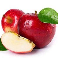 Саженцы яблони с повышенной морозостойкостью. Предзаказ всего за 300 руб.